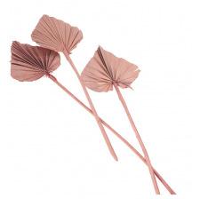 10 Feuilles de Palmier découpées Rose Sable