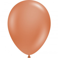 Ballons de baudruche biodégradable Terracotta (x5)