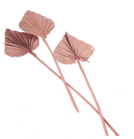 10 Feuilles de Palmier découpées Rose Sable| Hollyparty