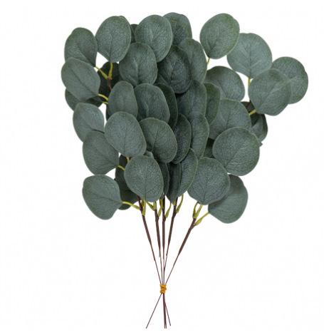 5 Branches de feuilles d'eucalyptus vertes 35 cm| Hollyparty