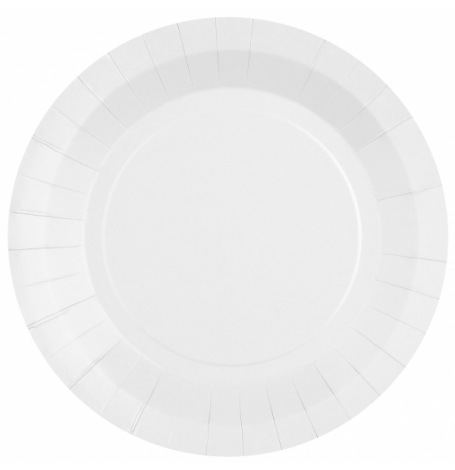 Assiettes biodégradable Blanc (x10)| Hollyparty