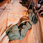 Guirlande feuilles d'eucalyptus vertes 2M