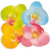Pétales Fleur Table Hawai (x20)