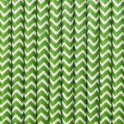 Pailles Biodégradable en papier Chevron Vert (x20)