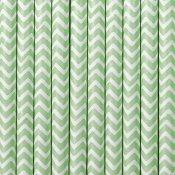 Pailles de Fête en carton Chevron Vert d'Eau (x20)