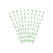 Pailles de Fête en papier Rayure Mint (x20)