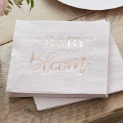 Serviettes en papier Baby in Bloom (x16)